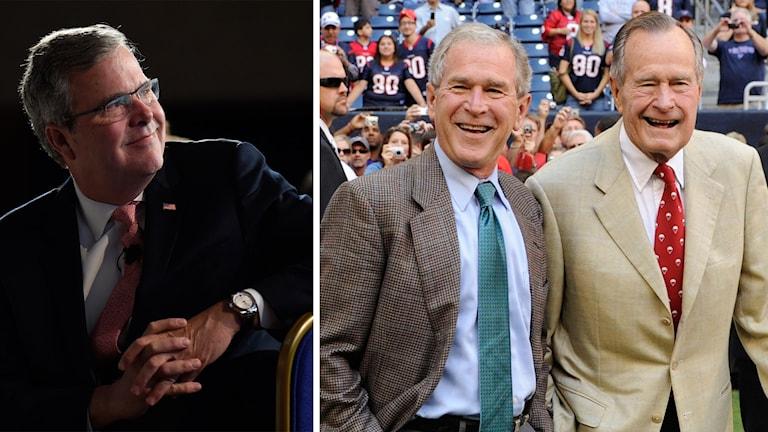 Jeb Bush kan bli den tredje i familjen som blir USA:s president. Foto: TT