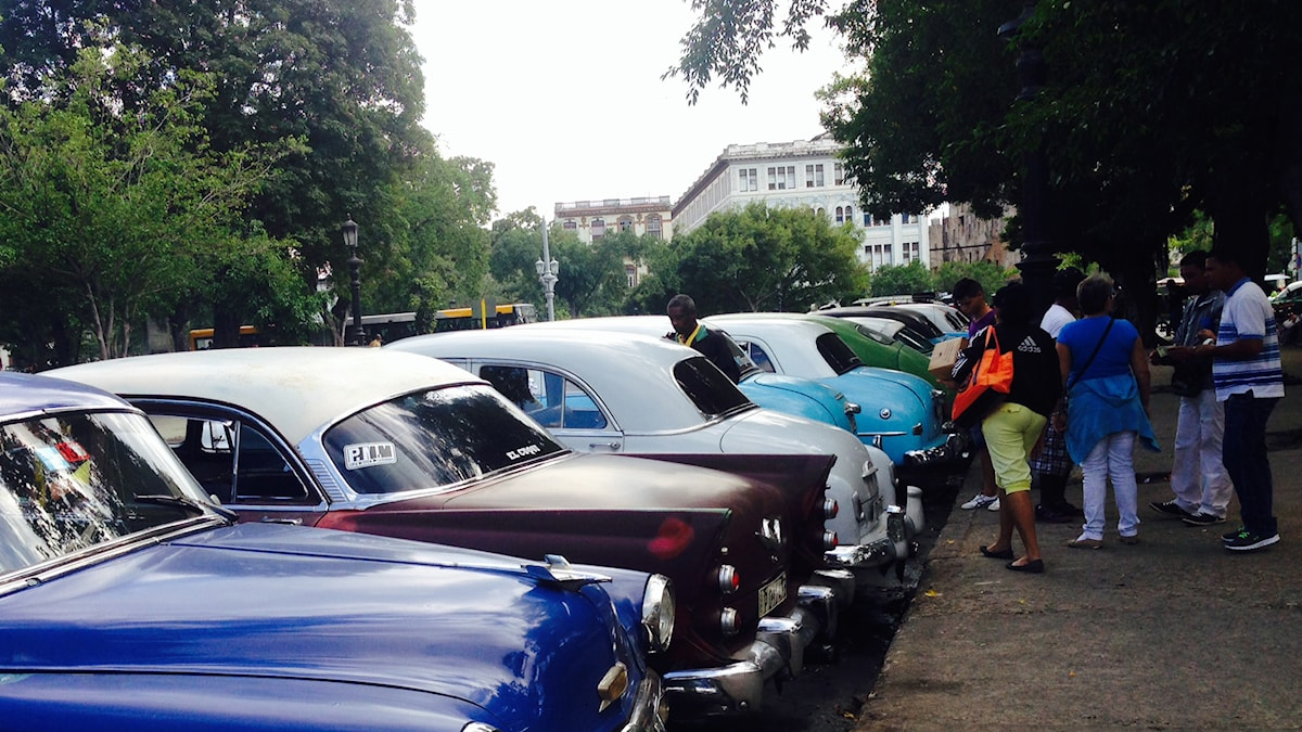 Bilar står uppradade i Havanna. Foto: Lotten Collin/Sveriges Radio.