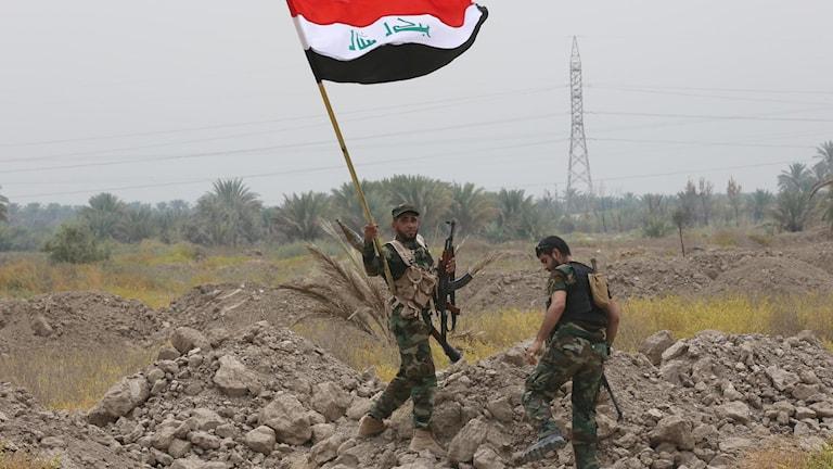 Irakiska shiitiska soldater på väg mot fronten för att strida mot IS. Foto: Hadi Mizban/TT
