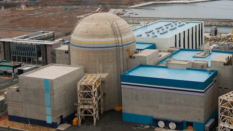 Sydkoreas kärnkraft har utsatts för en cyberattack. Bilden visar kraftverket Shin-Kori. Foto: Ahn Young-joon/TT.