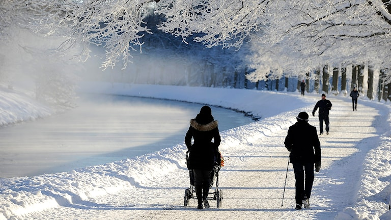 På fredagen var det en vacker och kall vinterdag i Stockholm. Foto: Anders Wiklund/TT