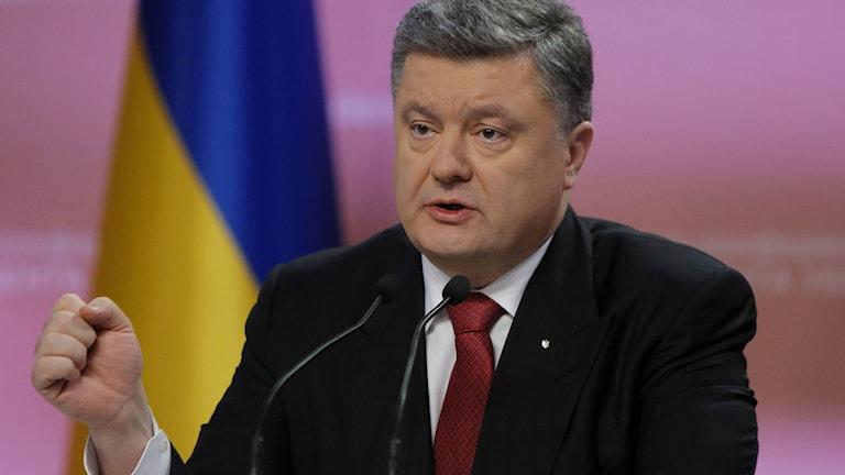 Ukrainas president Petro Poroshenko under en presskonferens i Kiev måndagen 29 December.