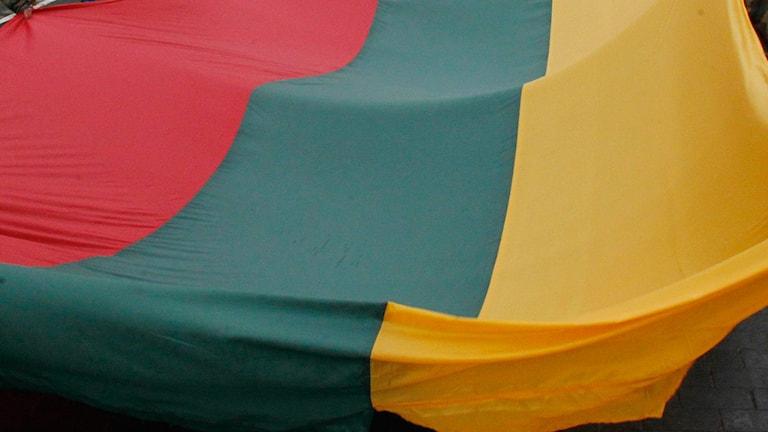 Litauen, flagga