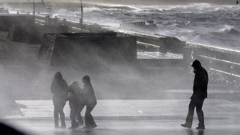 Stormvindarna piskar strandpromenaden i Västra Hamnen i Malmö vid ett tidigare oväder. Arkivfoto: TT.