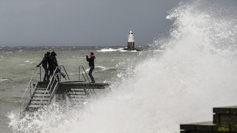 Stormen Svea slog till mot Sverige på fredagen. Foto: Johan Nilsson/ TT.