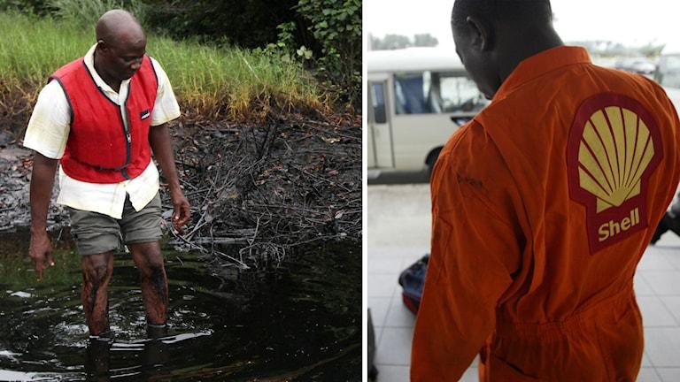 Oljebolaget Shell kompenserar drygt 15000 fiskare. Foto: TT