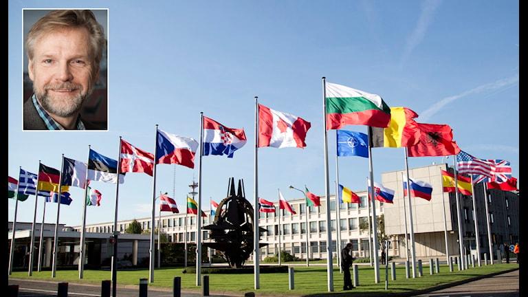 Tomas Ramberg kommenterar de politiska partiernas inställning till ett svenskt Nato-medlemskap. Foto: TT / Sveriges Radio