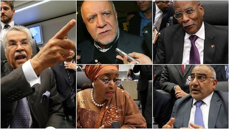 Saudiarabiens oljeminister Ali Ibrahim Naimi, Irans oljeminister Bijan Namdar Zangeneh, Nigerias oljeminister Diezani Alison-Maduek och Iraks oljeminister Adil Abd Al-Mahdi.