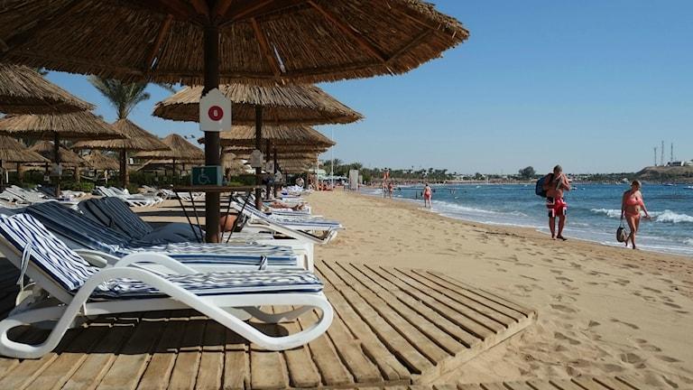 Solstolar längs stranden mot röda havet