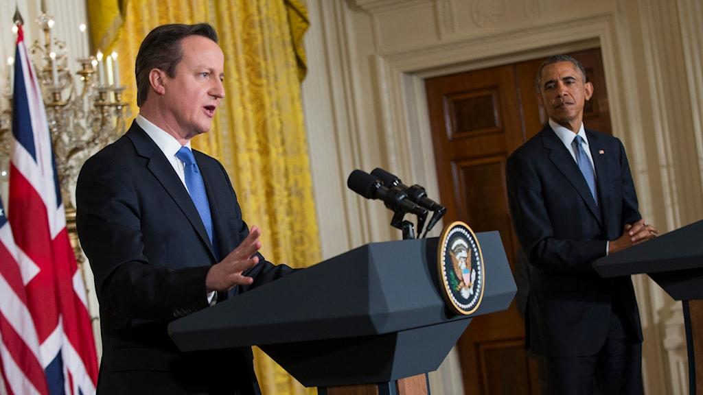 Storbritanniens premiärminister David Cameron. Foto: TT