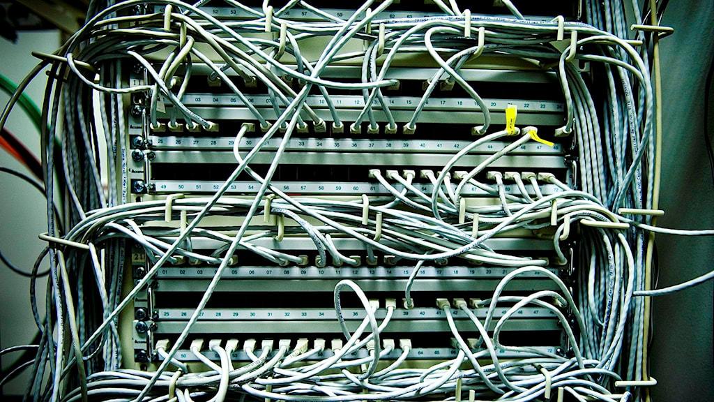 Datorsladdar på baksidan av en dator. Foto:Magnus Hjalmarson Neideman /TT.