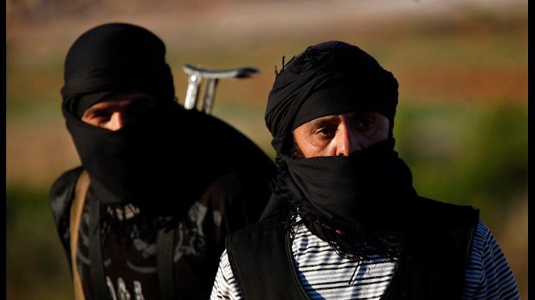 Dschihad, IS (Foto: Khalil Hamra/TT)