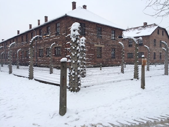 I Auschwitz och de andra utrotningslägren dog många av de 6 miljoner judar som nazisterna mördade. Foto: Vincent Dahlbäck.