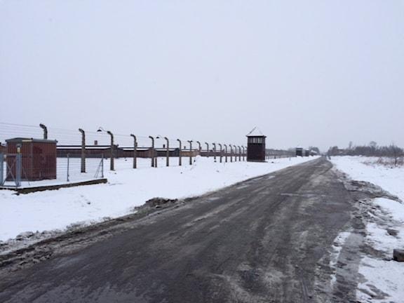 Vägen till Auschwitz.