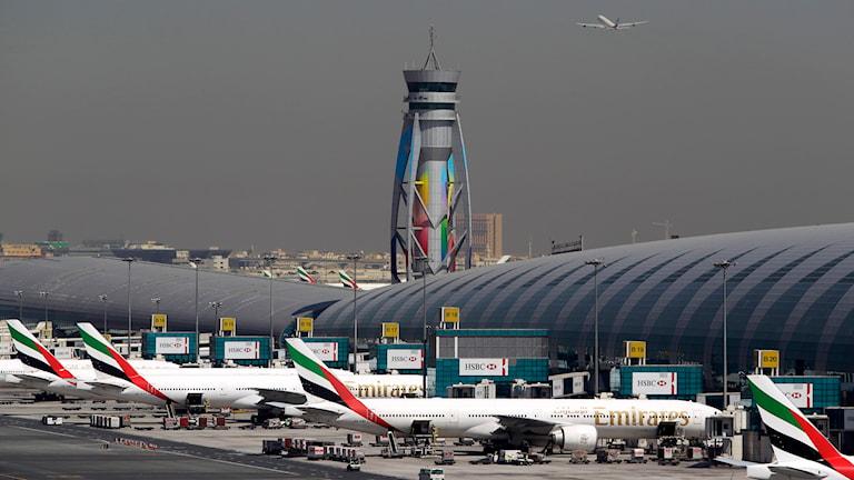 Flygplatsen i Dubai, i Förenade arabemiraten. Foto: TT