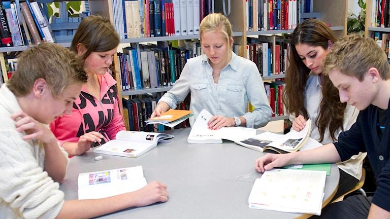 Elever studerar. Foto: Bertil Ericson/TT.