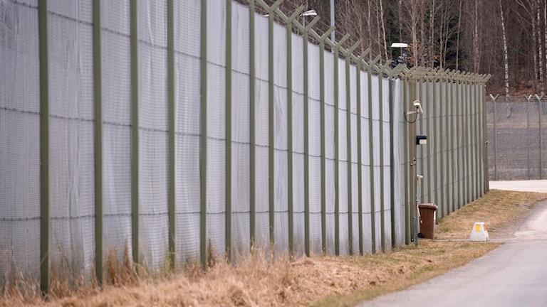 Staket utanför fängelse. Foto: Fredrik Sandberg/TT.
