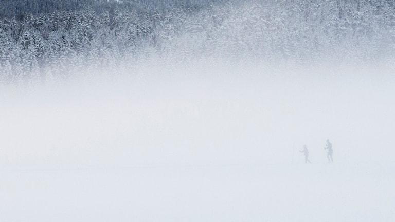 Mycket snö i luften och man kan skymta två människor.