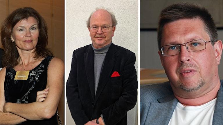 Heidi Avellan Sydsvenskan , Mats Johansson Svenska Dagbladet och Olov Abrahamsson Norrländska socialdemokraten. Foto: TT