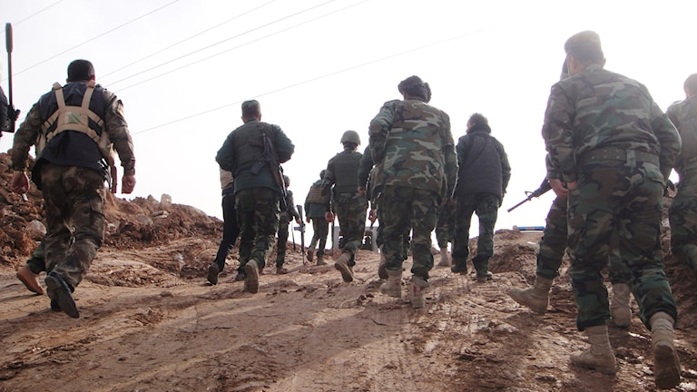 Militärer från de kurdiska peshmerga-styrkorna i norra Irak. Foto: TT