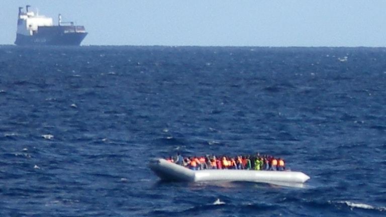 Båtflyktingar utanför Italiens kust. Foto: TT/AFP/Marina militare
