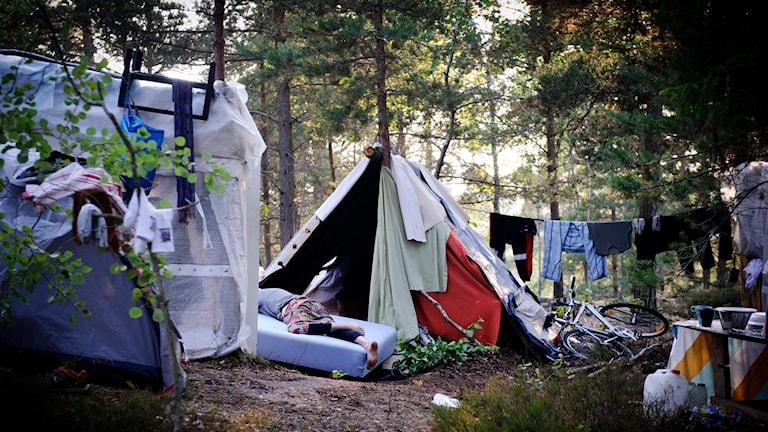 Romskt tältläger i Högdalen, Stockholm. Foto: Annika Af Klercker/TT