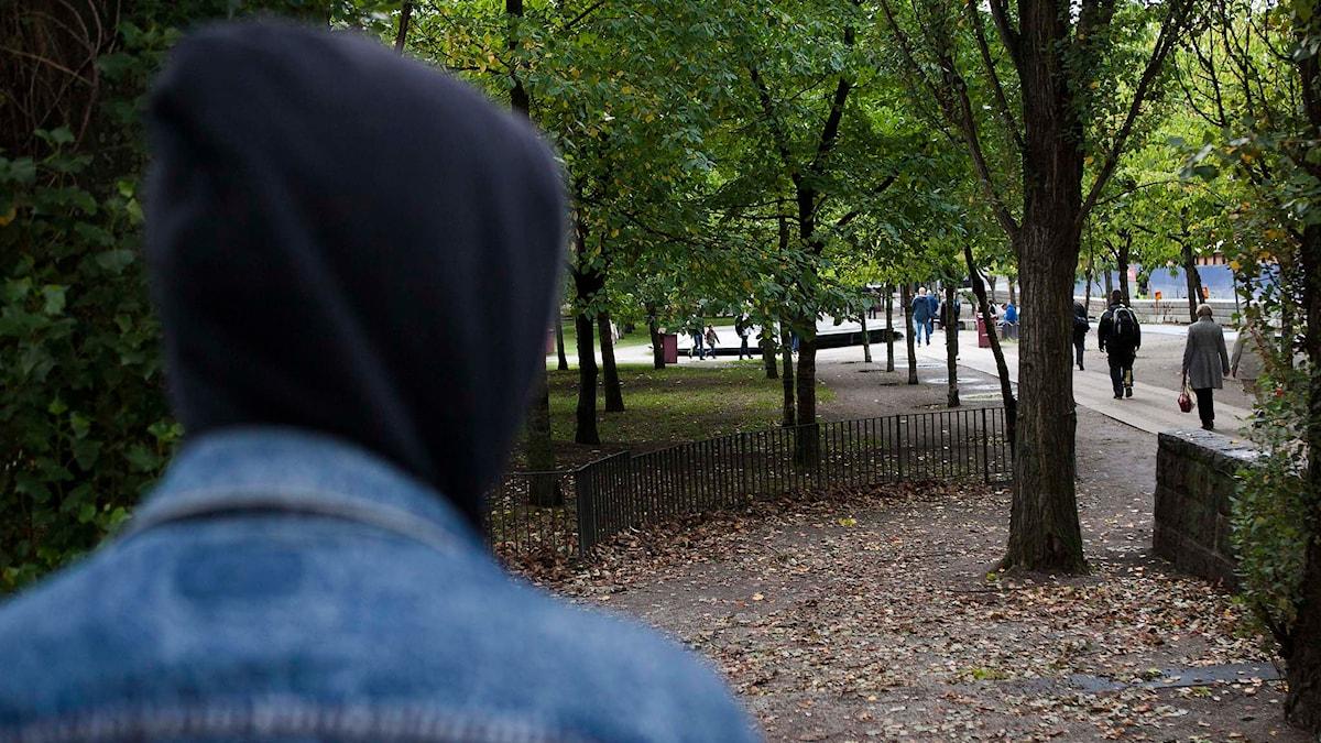 Anonym person syns bakifrån. Foto: Robin Haldert/TT.
