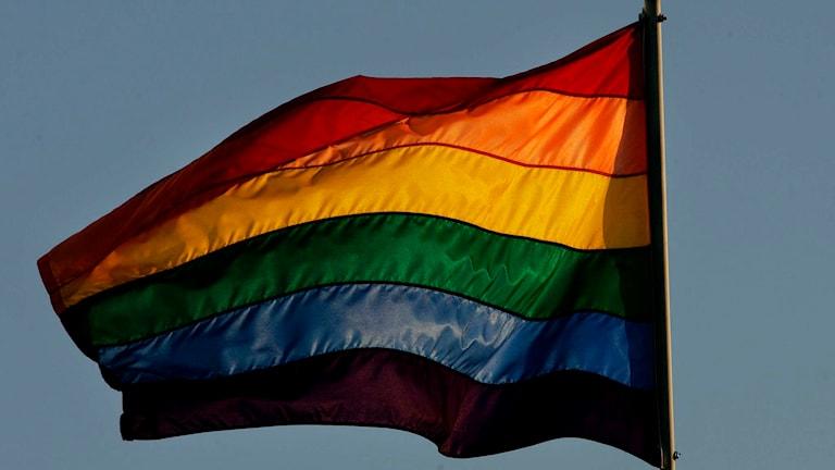 En regnbågsflagga. Foto: Sandy Huffaker/TT.