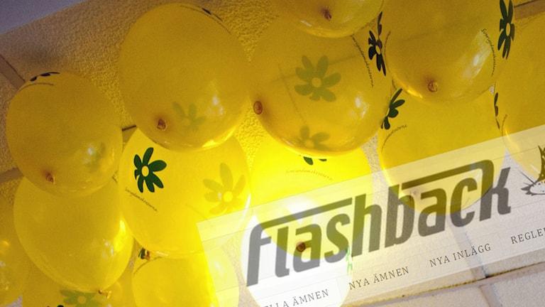 Balonger med Sverigedemokraternas logga samt Flashbacks logga (infälld).