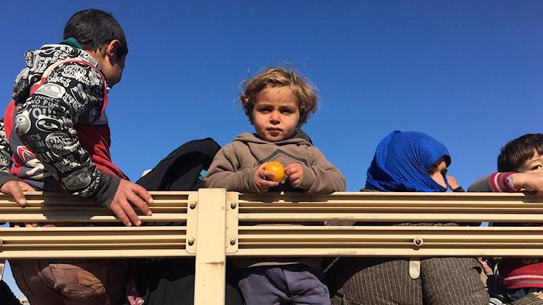 Barn på ett lastbilsflak