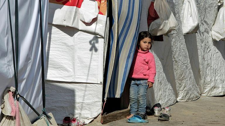 Syrisk flykting i Libanon. Foto: Bilal Hussein/AP.