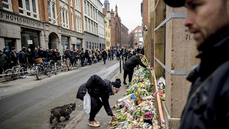 Köpenhamnsbor lägger blommor utanför synagogan i Köpenhamn. Foto: Rumle Skafte/TT.