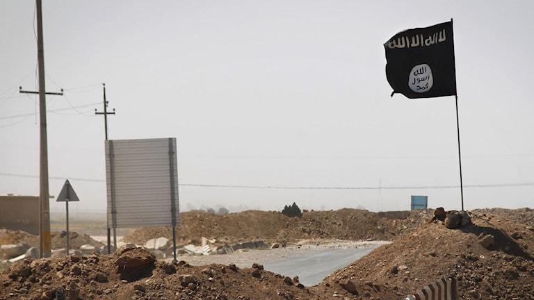 En svart IS-flagga i en grushög. Foto: Jim Lopez/TT.
