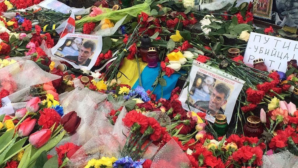Blommor på Självständighetstorget i Kiev. Foto: Johanna Melén/Sveriges Radio
