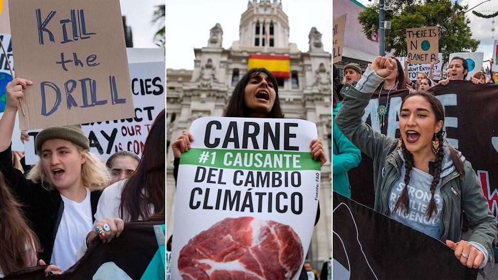 Klimatdemonstrationer runtom i världen