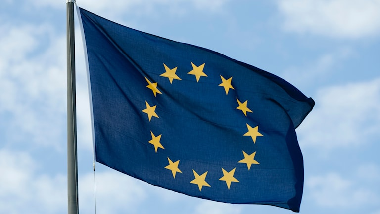 EU-flagga. Foto: Henrik Montgomery/TT.