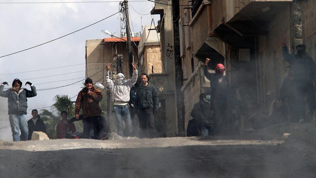 Maskerade demonstranter gör segertecken. Foto: Anwar Amro/TT.