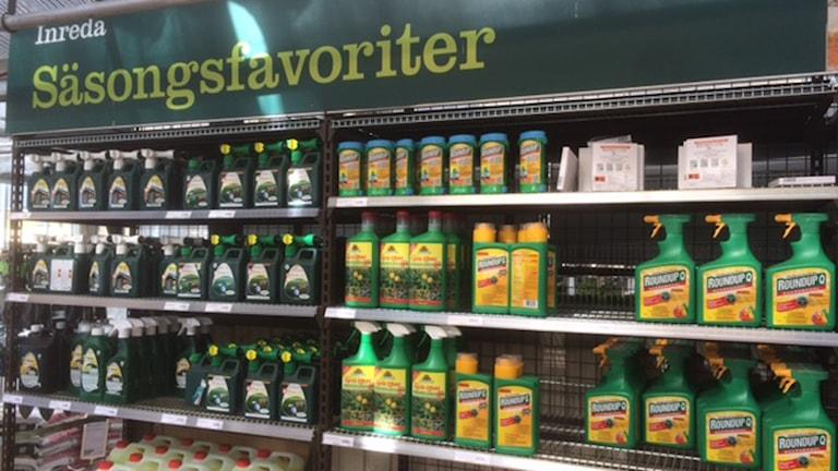 Ogräsmedel på butikshylla. Foto: Anders Wennersten / Sveriges Radio