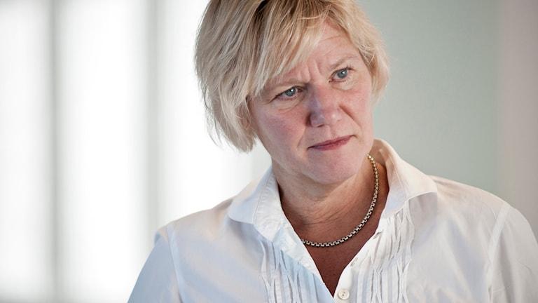 Ann-Marie Begler, skolinspektionen