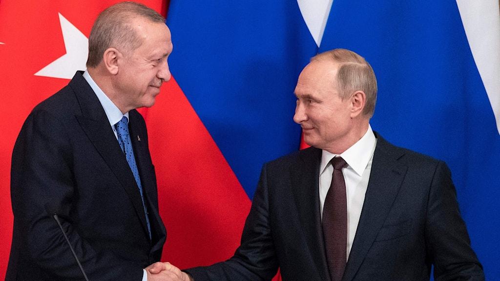 Erdogan och Putin