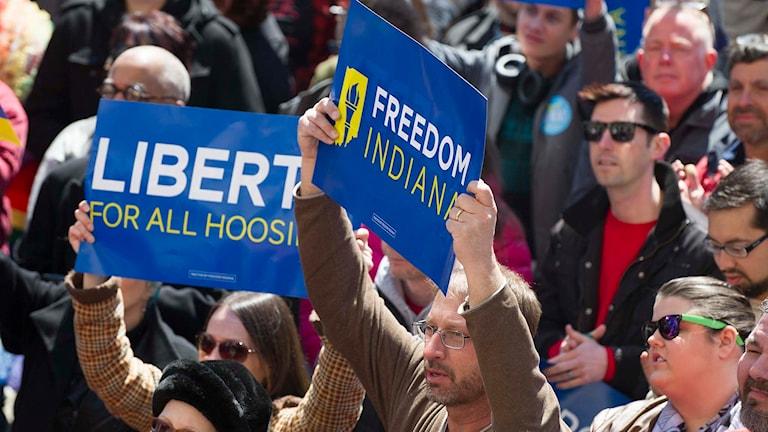 Demonstration i Indiana mot lag som diskriminerar homosexuella. Foto: Doug McSchooler/TT.