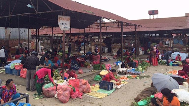 Katmandus största matmarknad. Foto: Nivette Dawod/Sveriges Radio.