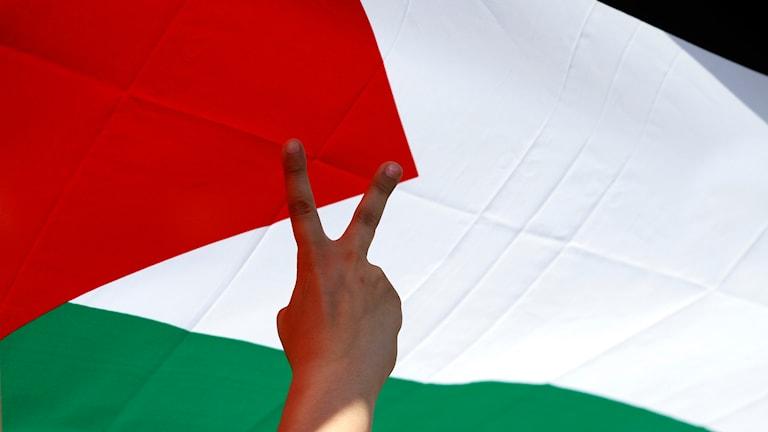 Palestina, flagga
