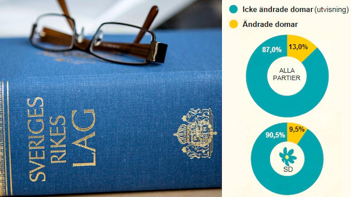 Lagbok. Grafik som visar domar i asylärenden. Foto: Christine Olsson/TT. Grafik: Liv Widell/Sveriges Radio