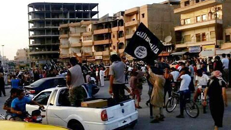 IS-anhängare viftar med en flagga från en bil på en gata i Raqqa i Syrien. Foto: TT.