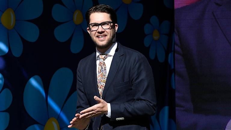 SD-ledaren Jimmie Åkesson. Foto: Anders Wiklund/TT