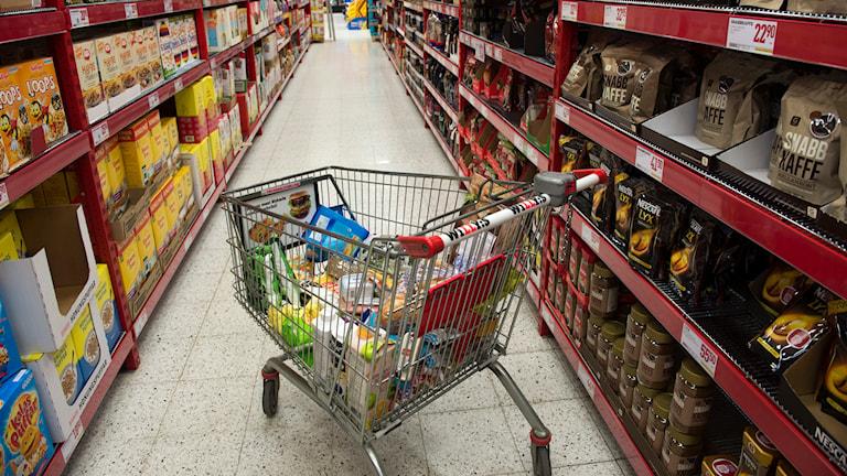 Kundvagn med matvaror i en av Willys butiker. Foto: Fredrik Sandberg/TT.