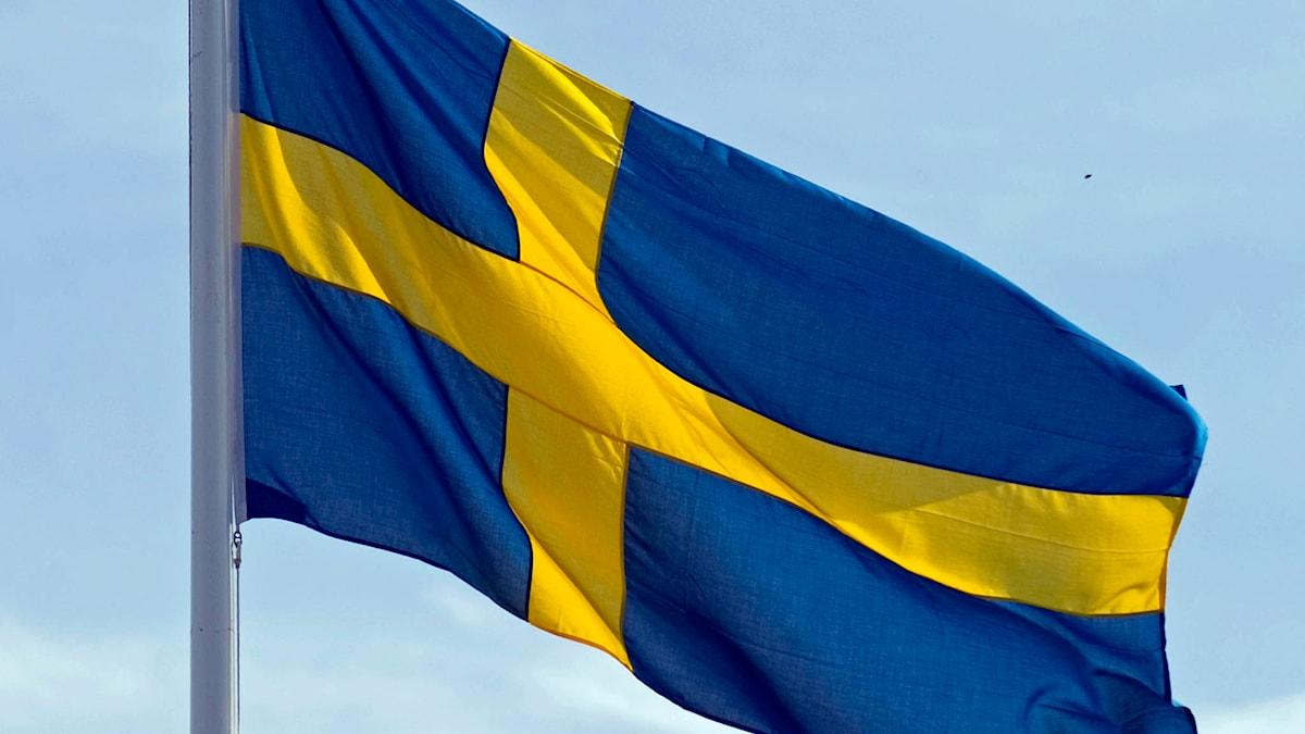 Sveriges flagga. Foto: Fredrik Sandberg/TT.
