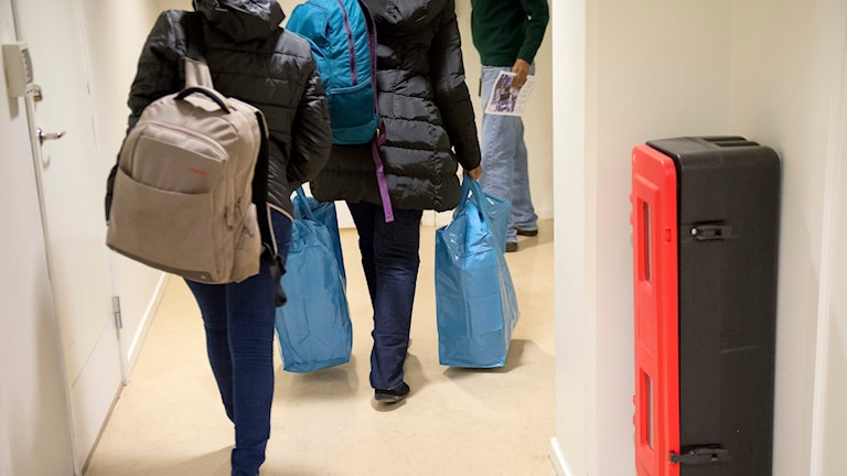 Människor anländer till Migrationsverkets lokaler i Stockholm. Foto: Maja Suslin/TT.