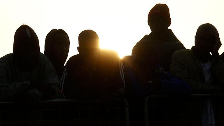 Flyktingar, unga män. Foto: Antonio Calanni/TT.